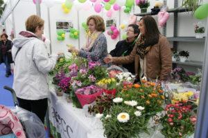 Flores solidarias en la lucha contra el cáncer