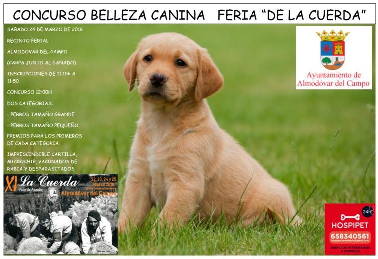 concurso canino Feria La Cuerda