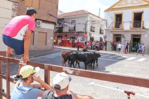 Los toros, en la plaza de San Benito
